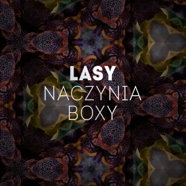 LASY   NACZYNIA   BOXY
